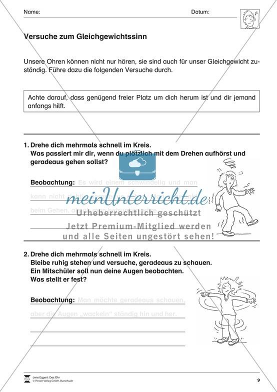 Biologie Förderschule | Unterrichtsmaterialien auf meinUnterricht.de