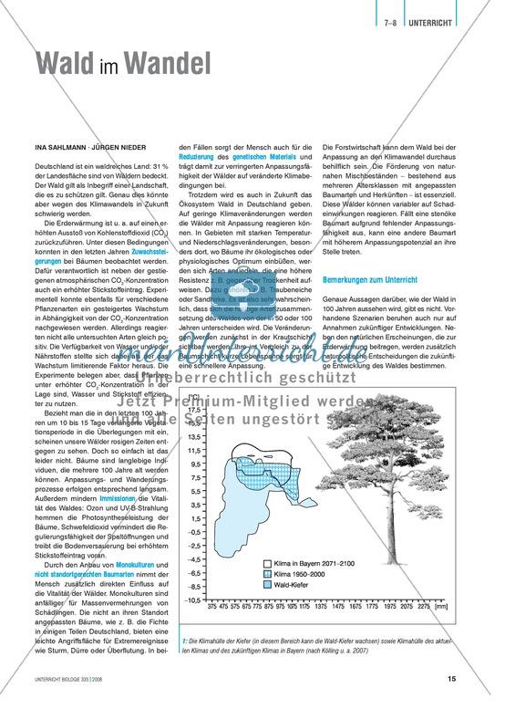 Wald im Wandel - mögliche Folgen des Klimawandels für Bäume und Wälder - Info-Text und Aufgaben