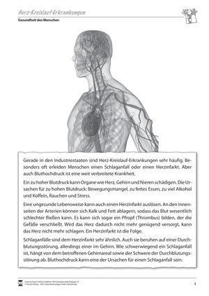 Material für Vertretungsstunden: Herz-Kreislauf-Erkrankungen