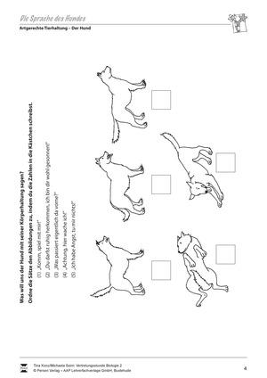 Artgerechte Tierhaltung: Die Sprache des Hundes: Körperhaltung - Vertretungsstunde
