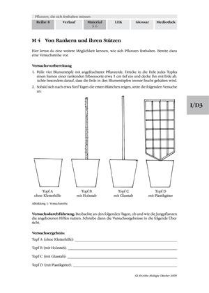 Kletterpflanzen: Ranken als Kletterorgane
