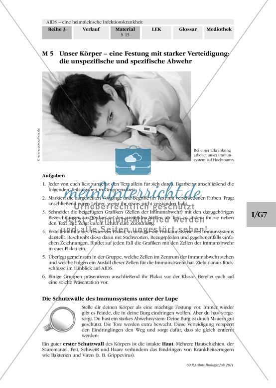 Immunabwehr: Gruppenarbeit, Text, Plakaterstellung