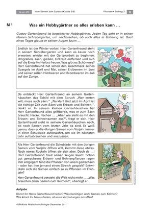 Keimungsbedingungen von Pflanzensamen: Text, Versuch