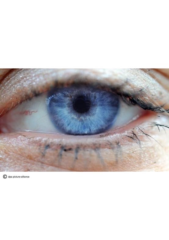 Bilder rund um das menschliche Auge