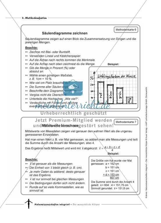 Gesammelte Arbeitsblätter: Naturwissenschaften | meinUnterricht.de